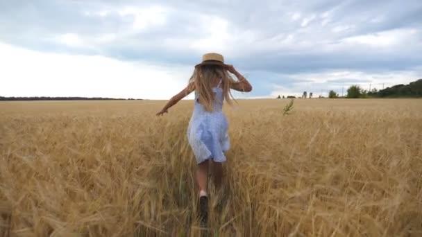 Roztomilé dítě s dlouhými blond vlasy běží přes pšeničné pole. Malý kluk v slamáku běhá po louce ječmene. Malá holka v šatech tráví čas na zlaté plantáži. Zadní pohled Zpomalený pohyb