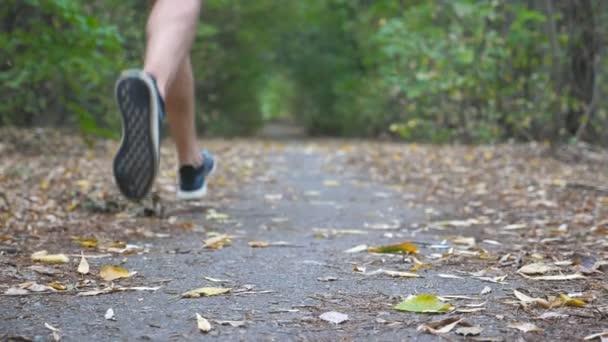 Sportlicher Mann sprintet im Frühherbstwald schnell auf Trail. Starker Sportler, der auf Pfaden entlang der Natur läuft. Athletischer Typ, der im Freien trainiert. Konzept eines gesunden aktiven Lebensstils. Niedriger Blickwinkel