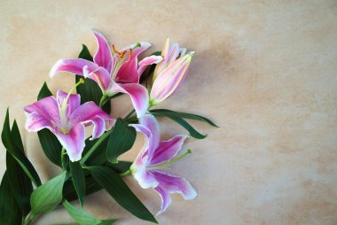 Tender bouquet of pink lilies lies on natural color board, Valentines Day background, wedding day, Happy Birthday.