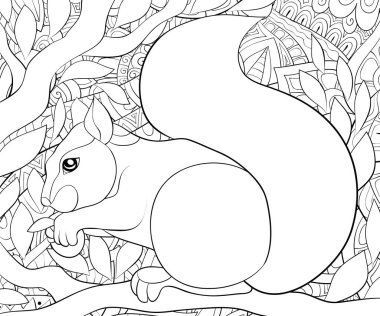 A cute squirrel on the brunch with ornaments image for relaxing activity.A coloring book,page for adults.Zen art style illustration for print.Poster design.