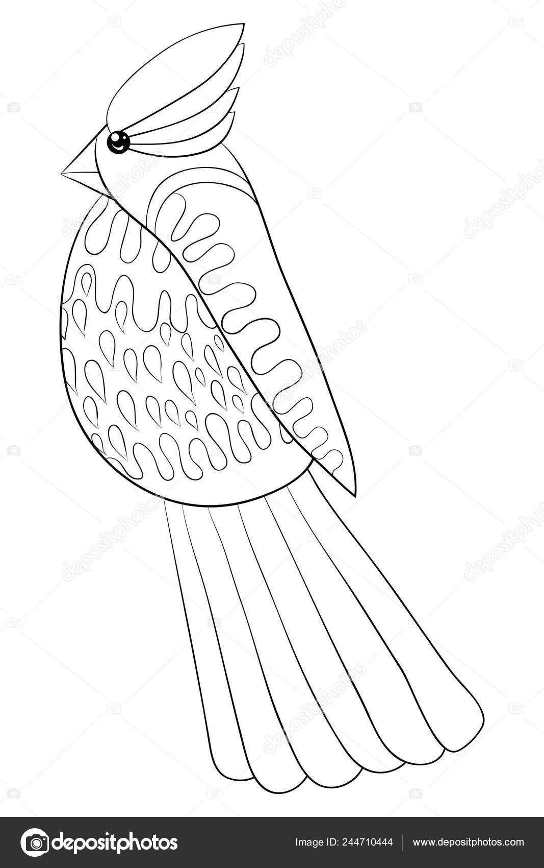 Una Caricatura Aves Dibujos Animados Lindo Para Relajarse Actividad