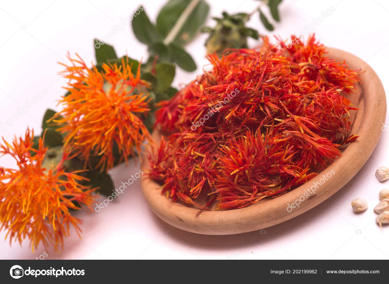 Safflower Latin Name Carthamus Tinctorius Fake Saffron White