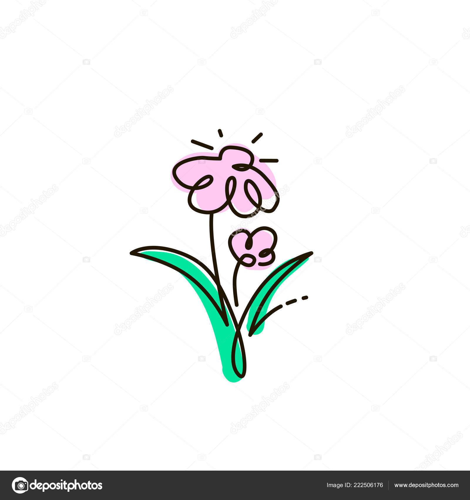 Vektorove Cary Dva Kvety Zahradni Jeden Radek Barevne Kresby