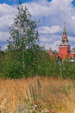 Moscow Kremlin, Spassky Tower on the fields and young birches, Moscow, symbols of Russia