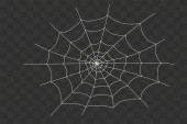 Fotografie Cobweb isolated on white