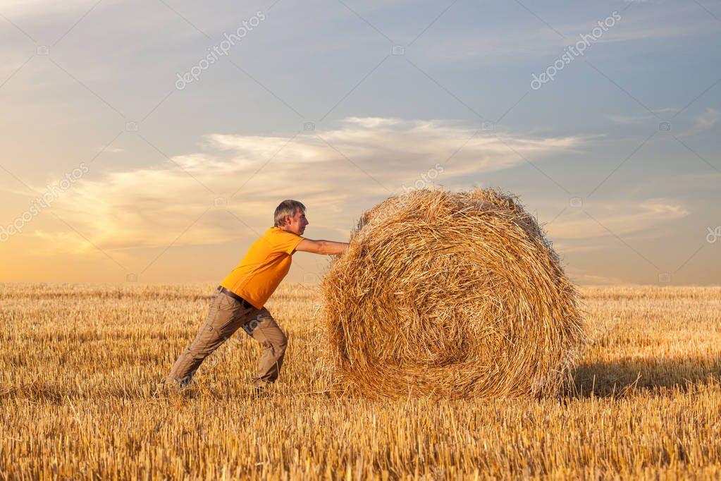 A man pushing a straw bale at sunset