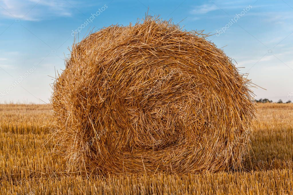 Rural landscape with a bale of golden straw