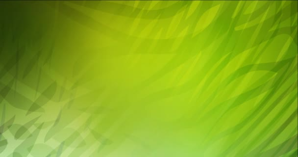 4K looping light green, yellow video sample with curved lines.