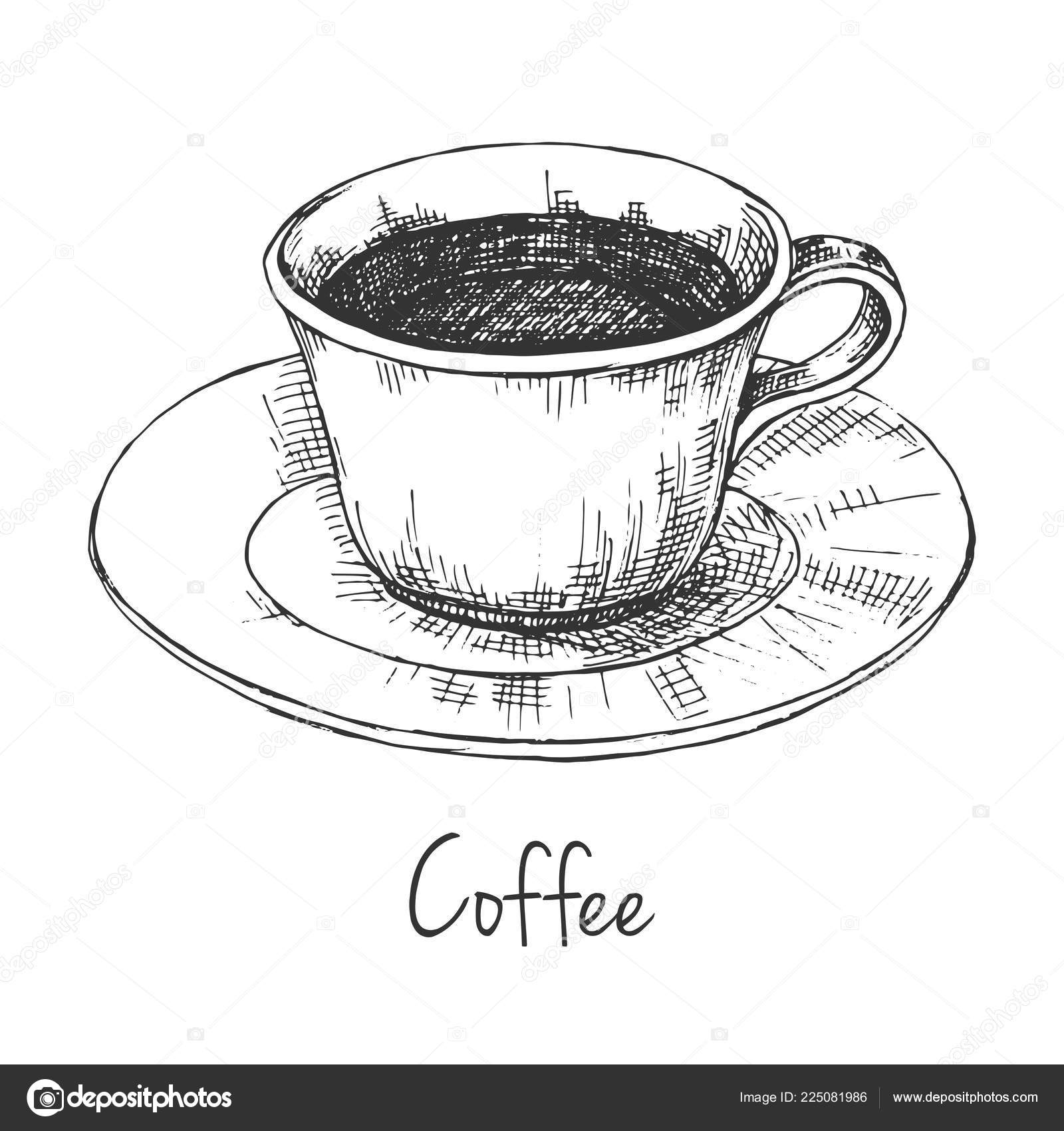 Sketch Mug Coffee Saucer Inscription Coffee Vector Illustration Sketch Style Vector Image By C Nadiia Kud Gmail Com Vector Stock 225081986