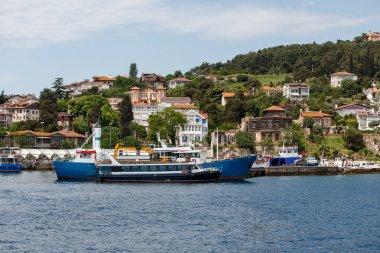 Heybeliada island scenic view of Istanbul city