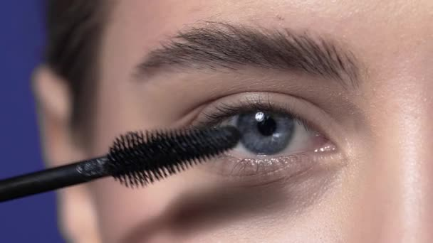 ce3662a1019 Close up of the eye lashes makeup, woman with evening makeup paints lashes, eye  makeup, beauty fashion makeup artist, beautiful eyes– stock footage