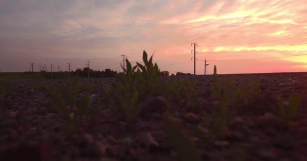 Letecký pohled. dlouhé a klikaté cestě procházející zelené kopce s krajinu při západu slunce. 4k