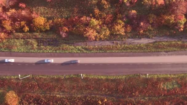 Letecký pohled na silnici highway v podzimní krajině. Les podél cest. 4k