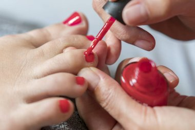 The master covers the customer's nails with varnish. Hands in gloves cares about a woman's foot nails. Pedicure, manicure beauty salon concept. Nail varnishing in red color