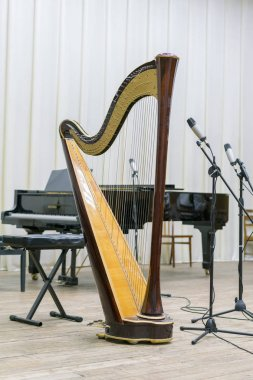 harp on stage. vertical photo