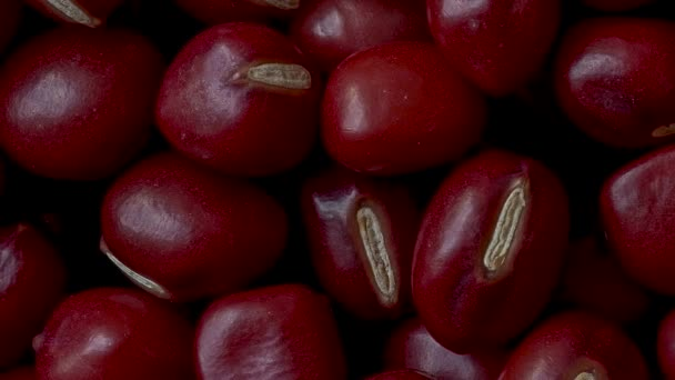 Nahaufnahme von Adzuki Beans, Vigna angularis, Pan Shot