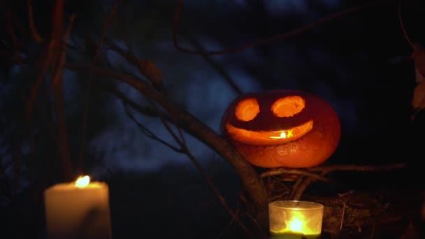 Ragyogó narancs tök faragott félelmetes grimasz áll száraz fa ágak hátterében sötét mágikus erdő. Gyertyák fénye világítja meg Jack o lámpás fejét. Halloween ünnepi koncepció.