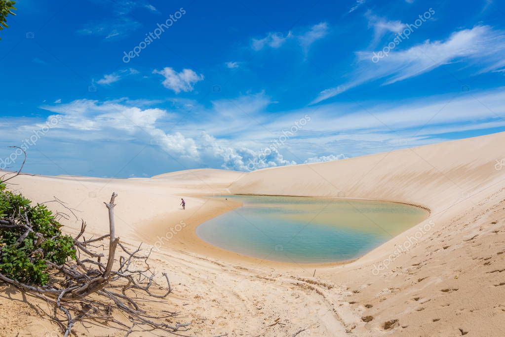 Amazing landscape, white sand dunes, blue sky, flesh water lagoon, wood trees and a lonely person