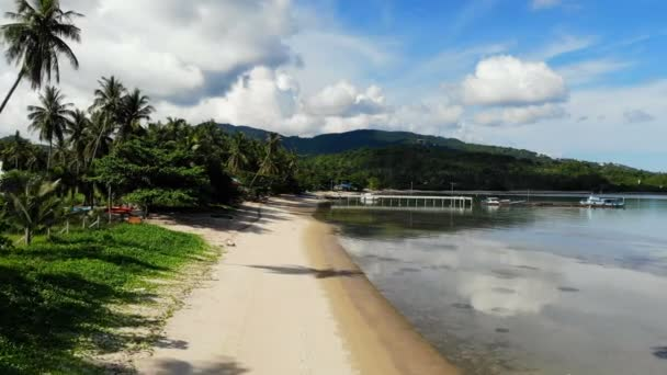 úžasný pohled tropické pláže s palmami a modrý oceán vlny