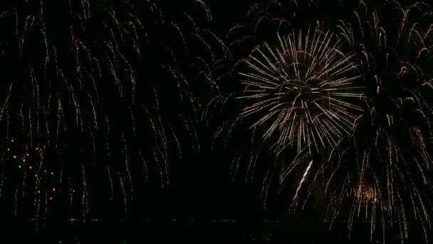 4 k video ze zlaté ohňostroje zářící drak noční obloze