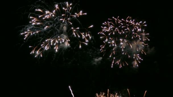 4k video zlaté ohňostroje zářící na drak noční obloze