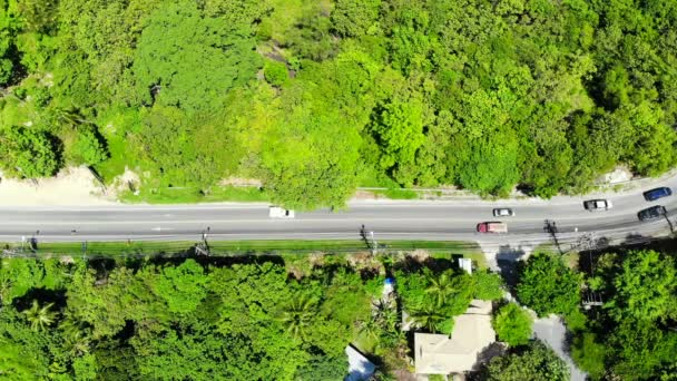 aerial view of cars driving along highway through green trees