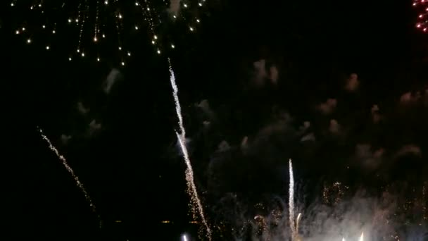 4 k videa ohňostrojů zářící drak noční obloze