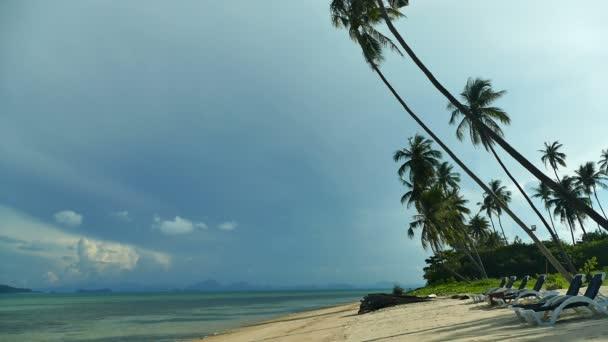malebný pohled na mořských vln a palem na tropické pláži