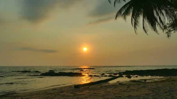 Západ slunce z mořských vln, palem a dramatické nebe