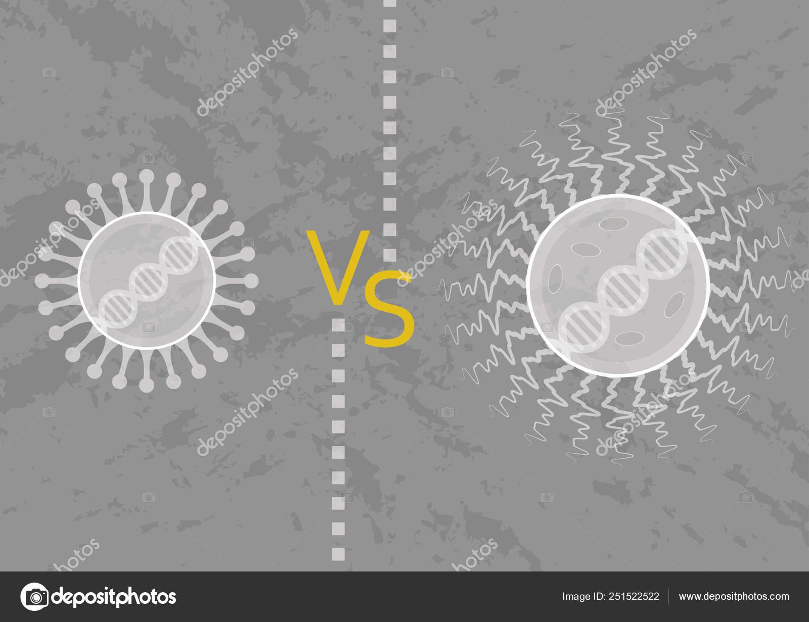 Microorganismo Virus Bacterias Sus Diferencias Estructura