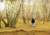 Északi gyaloglás a fogyáshoz. Felnőtt nő részt a túrázás a város Park az aktív és egészséges életmódra