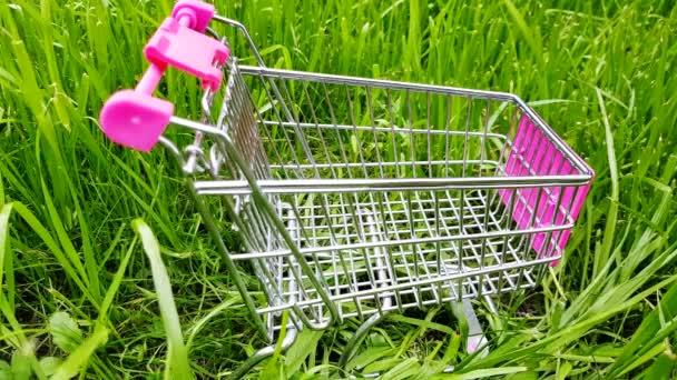Prázdný nákupní košík na hračky stojí na louce v zelené trávě, venku, v létě, 4K