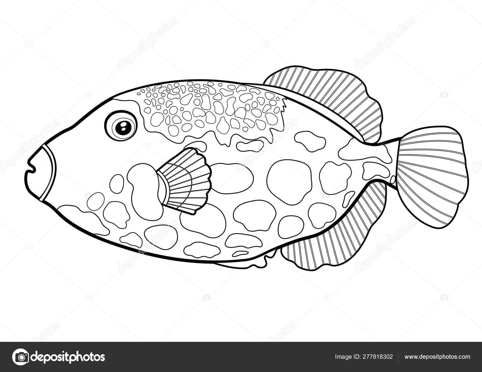- Triggerfish Fish Clown, Line Silhouette Cartoon Hand Drawn Sea