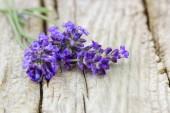 Fotografie květy levandule na dřevěné pozadí