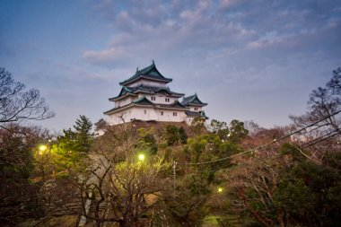 Early morning walk at Wakayama Castle in Japan