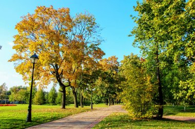 Solar autumn in the park Tsaritsyno in Moscow city