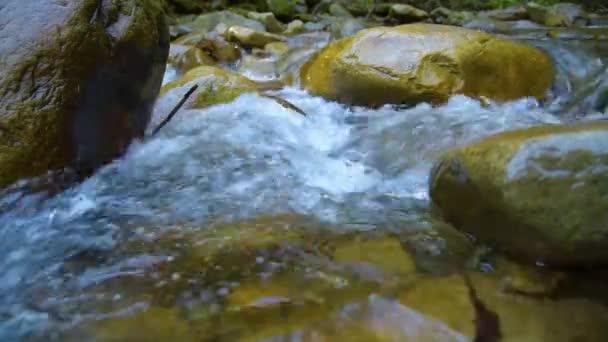 Lesní horské bystřiny. Lesní řeky. Horská řeka. Vodu. Vodopád Cascade. Krása v přírodě. Přepínač na šířku. Čistá čerstvá voda vodopád v lese v horách