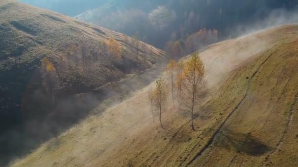 Autumn landscape in Transylvania