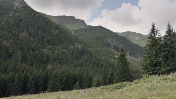 Monumental Slovakia canyon in cloudy weather. Peaks of mountains in fog, in distance. Mountain slope with forest, mountains, meadows and pastures. Excursional destination for hiking, vacation