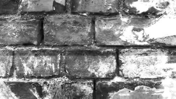 4k Wand mit Lärm und Staubeffekt