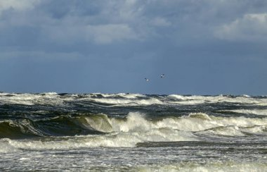 Storm on the Baltic sea