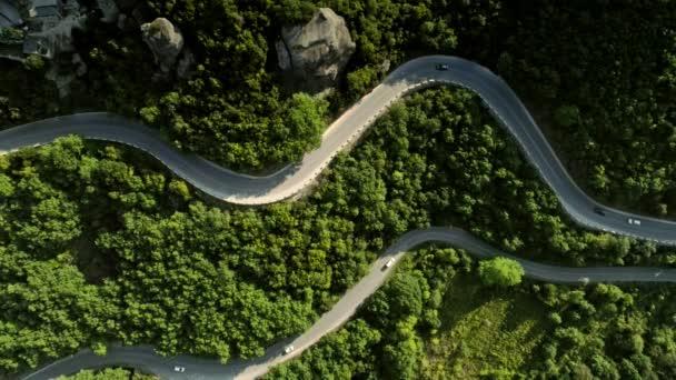 Statický záběr pohled shora dvě vinutí asfaltkou uprostřed úžasné zelený hustý les
