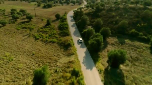 Letecký snímek bílé auto řízení země asfaltové silnici obklopené lesem a loukou