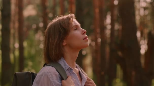 Beautiful tourist woman admiring natural beauty of summer forest rising up head