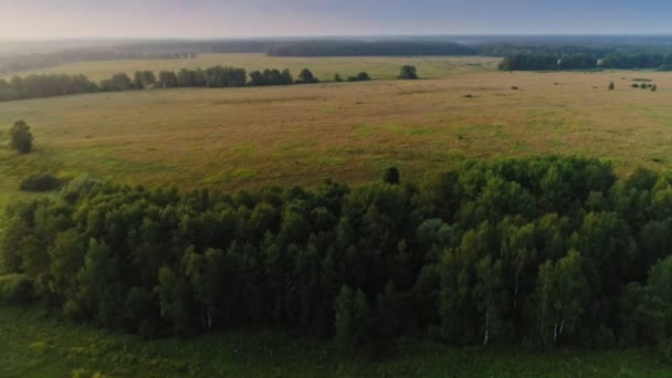 Aerial shot flying over beautiful endless meadow and forest amazing countryside landscape