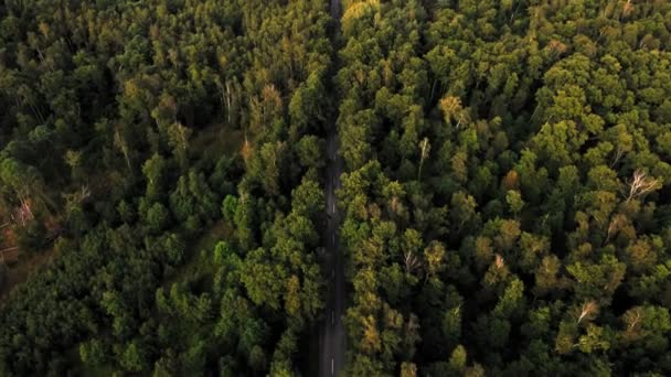 Aerial shot slowly flight over amazing asphalt high-speed road in suburb in the middle of the forest