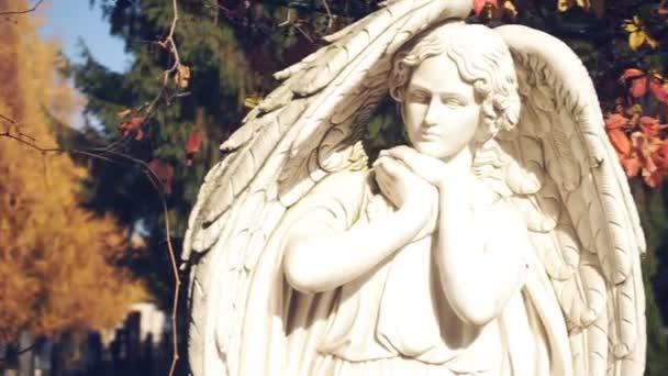 Mramorová Angel na pozadí podzimního listí