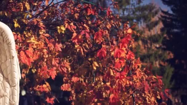 Bílý anděl na pozadí podzimního listí