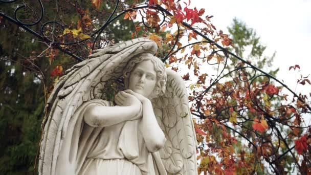 Bílý anděl socha closeup