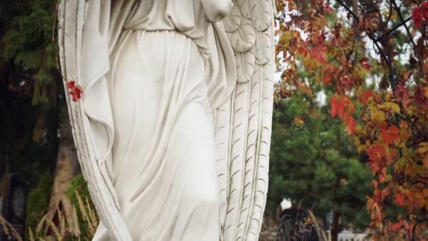 Gyönyörű videó a márvány szobor egy angyal